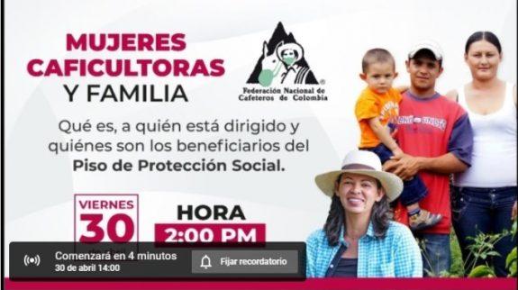 Se realizó Conversatorio virtual sobre Piso Mínimo de Protección Social